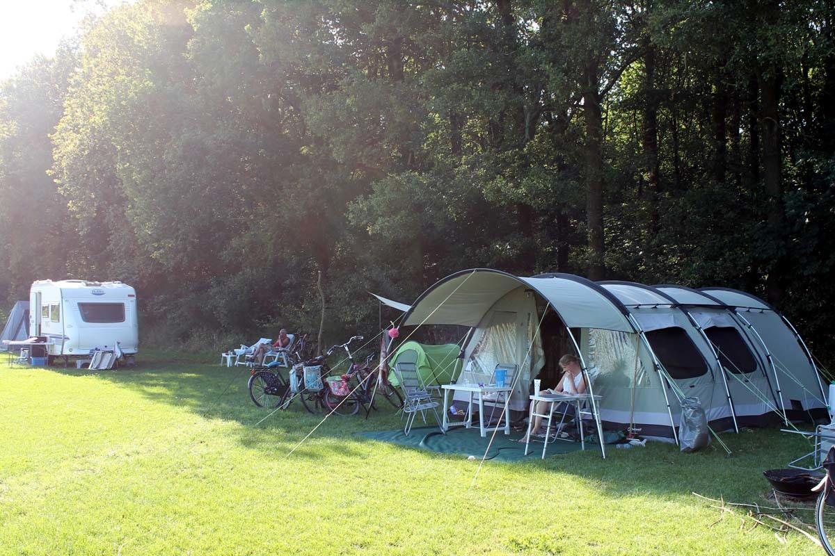 Campers & campervans